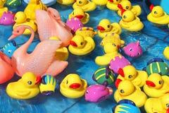 Patos del juguete Fotos de archivo libres de regalías