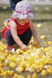 Patos del juguete de la cosecha Imagen de archivo