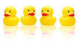 Patos do brinquedo Fotografia de Stock