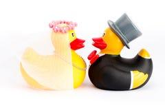 Patos do casamento imagem de stock royalty free