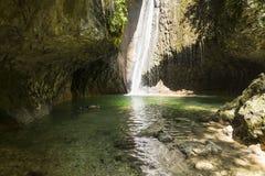 Patos e cachoeira Fotografia de Stock Royalty Free