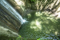 Patos e cachoeira Imagens de Stock