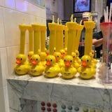 Patos em seguido Fotografia de Stock Royalty Free