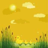 Patos em uma lagoa Ilustração do Vetor