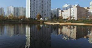 Patos em uma lagoa no parque filme