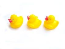 Patos en fila de A Foto de archivo