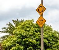 Patos en una señal de tráfico de la precaución de la travesía de la fauna de la fila Fotografía de archivo libre de regalías