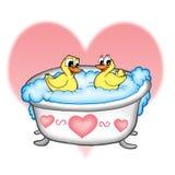 Patos no banheiro Foto de Stock Royalty Free