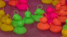 Patos plásticos de flutuação imagem de stock