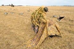 Patos que buscan - preparación del abrigo. Imagen de archivo