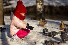 Patos que introducen de la niña Fotos de archivo
