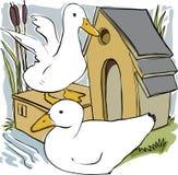 Patos y casa ilustración del vector