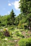 Patriarchal garden in Vladimir Stock Photo