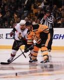 Patrice Bergeron, Boston Bruins Lizenzfreie Stockfotos