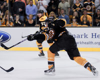 Patrice Bergeron, Boston Bruins Stockbild