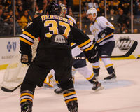 Patrice Bergeron, Boston Bruins Imagem de Stock