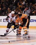 Patrice Bergeron, Boston Bruins Royalty Free Stock Photos