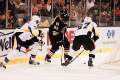 Patrice Bergeron, Boston Bruins Stock Images