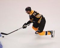 Patrice Bergeron, Boston Bruins Royalty Free Stock Photos