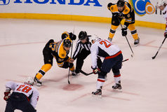 Patrice Bergeron and Brooks Laich take the face-off. Stock Images