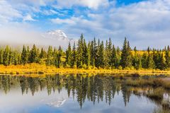 Patricia Lake among the firs and pines. The concept of extreme and ecotourism.  Cloudy morning in the Rocky Mountains. Patricia Lake among the firs and pines Royalty Free Stock Images