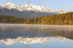 Patricia Lake in Jasper National Park fotografia stock libera da diritti
