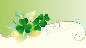 Patrick card with clover. Patrick background with green decorative shamrock Stock Photo