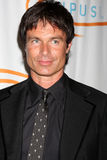 Patrick Muldoon arrives at the 12th Annual Lupus LA Orange Ball Royalty Free Stock Photo