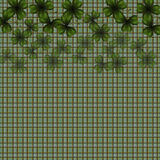 Patrick`s Day. Image translucent leaves clover in the top job. Background in the cell in the Irish style. illustration. Patrick`s Day. Image translucent leaves Royalty Free Stock Image