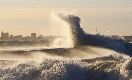 patrick storm Royaltyfri Bild