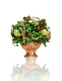 patricks φυτό Άγιος Στοκ Φωτογραφίες