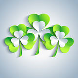 Patricks day card gray with three leaf clover Royalty Free Stock Images
