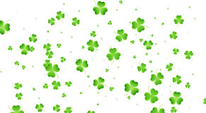Patricks day clover background. Flying shamrock leaves. Clover flying leaves background. Saint Patrick`s Day banner. Three leaf clover leaves Stock Photo