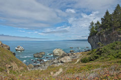 Patricks Point CA. Beautiful view north of Wedding Rock near Patricks Point CA. Rocky coast with redwoods, chaparral, clouds and Pacific ocean stock photo