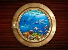 Patrijspoort en onderwaterwereld Royalty-vrije Stock Foto