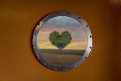Patrijspoortvenster met groene hart gevormde boom royalty-vrije stock fotografie