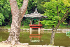 Patrimônio mundial do UNESCO de Coreia - palácio de Seoul Changdeokgung Foto de Stock