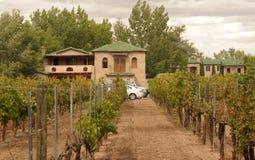 Patrimoine d'élevage de vin Photos stock