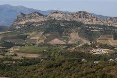 Patrimonio, Haute-Corse, Κορσική, ανώτερη Κορσική, Γαλλία, Ευρώπη, νησί Στοκ Εικόνες