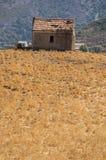 Patrimonio, Haute-Corse, Κορσική, ανώτερη Κορσική, Γαλλία, Ευρώπη, νησί Στοκ Φωτογραφίες