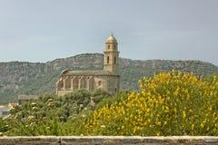 Patrimonio 16th århundradeSt Martins kyrka, Cap Corse, nordliga Korsika, Frankrike Royaltyfri Bild