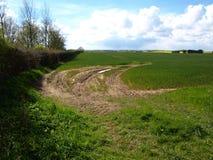 Patrington村庄和农田东部约克夏英国 库存照片