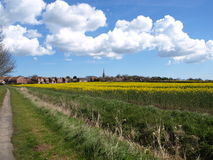 Patrington village and farm fields east yorkshire UK. Stock Photo