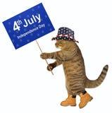 Patriota del gato con la bandera 2 imagen de archivo libre de regalías