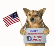 Patriota do cão com uma bandeira foto de stock royalty free