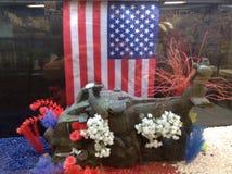 patriotic Stock Afbeeldingen