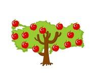 Patriotic apple tree Turkey map. apples Turkish flag. National S Stock Images