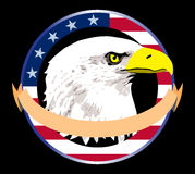Patriotic Bald Eagle Head Logo Illustration. Logo illustration of a dauntless eagle in USA colors emblem Royalty Free Stock Photos