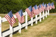 Patriotic display of American flags waving on white picket fence in small town USA