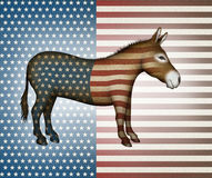 Patriotic Donkey Stock Photos